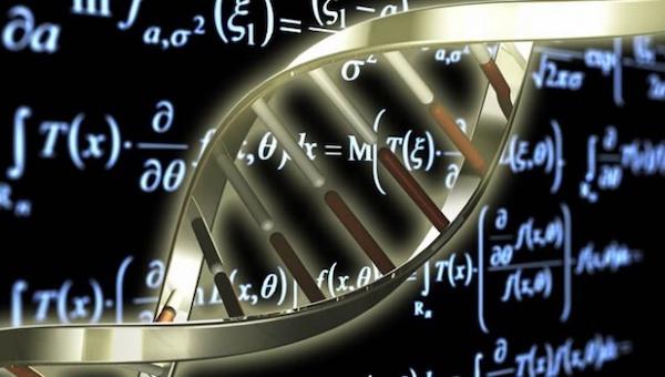 В Пущино съехались ведущие специалисты по биоинформатике