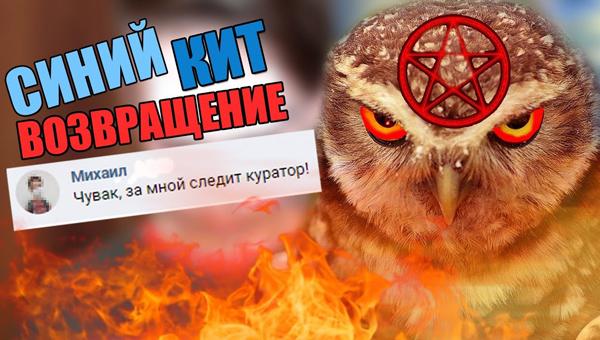 «Красная сова» вместо «Синего кита»: Украинские школьники играют в новейшую страшную игру