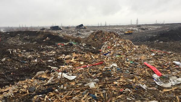 Правда о «Лесной»: только 15% нашего мусора