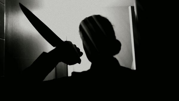 Девушка под Серпуховом искромсала ножом дверь и угрожала убийством