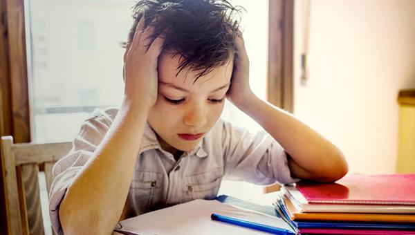 Глава Минпроса рассказала, сколько времени дети должны тратить на домашние задания