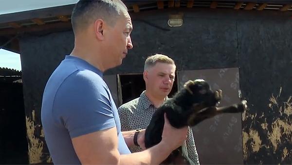 Александр Шестун посетил ранчо Игоря Яковлева в деревне Дубачино