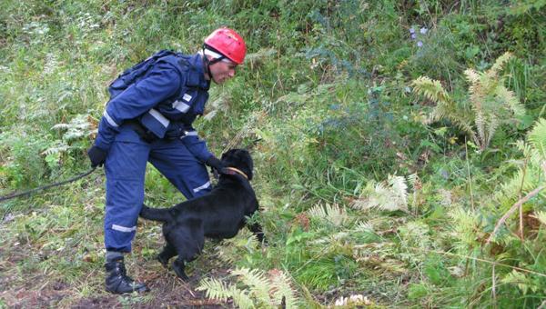 Жителя Подмосковья уже трое суток ищут в горах Кавказа