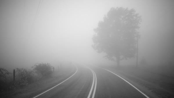 Густой туман окутает Подмосковье