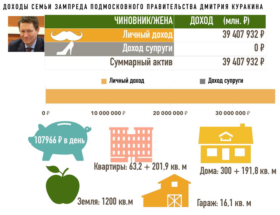 Министр экологии Подмосковья оказался самым состоятельным