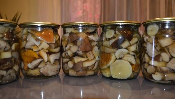 В Чехове мать с двумя детьми отравилась грибами