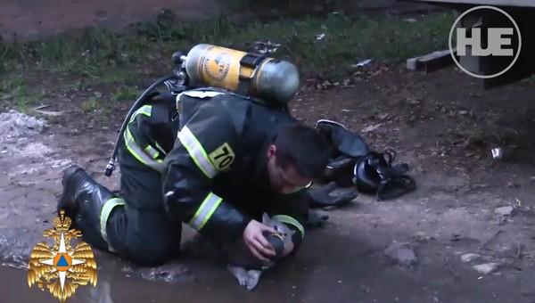 Пожарные откачали кота, который надышался угарным газом во время пожара