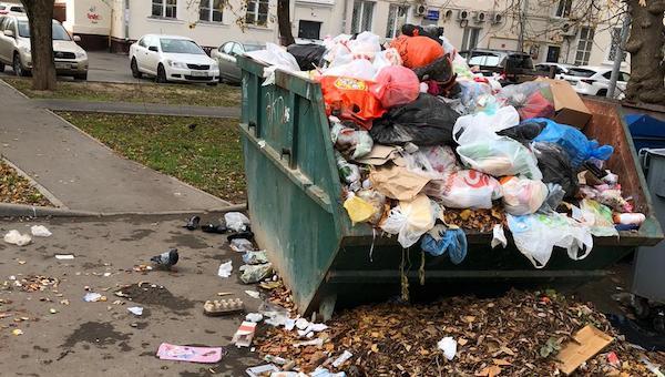 Контейнерные площадки в Серпухове все еще пугают