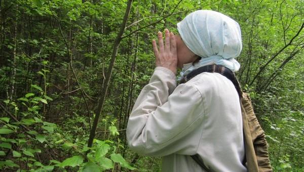 Две бабушки с маленькими внучками заблудились в лесу под Ланьшино