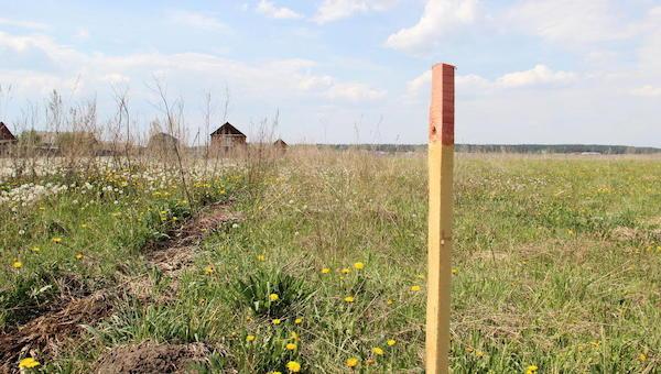 Серпуховским многодетным семьям начнут давать землю на Лесной