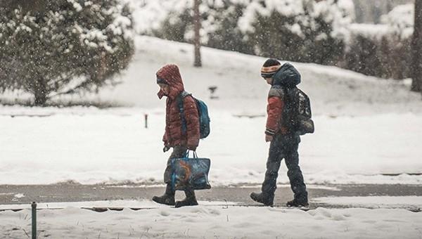 В Минобразования рассказали, как будут работать школы, сады и кружки в январе