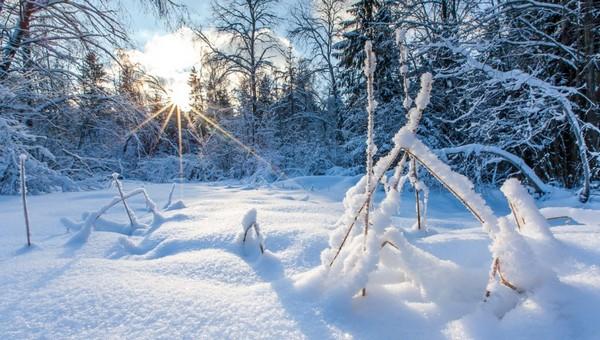 Надолго ли в Подмосковье пришли крепкие морозы?