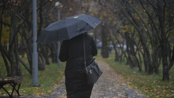 В ближайшие часы Подмосковье накроет желтый уровень погодной опасности