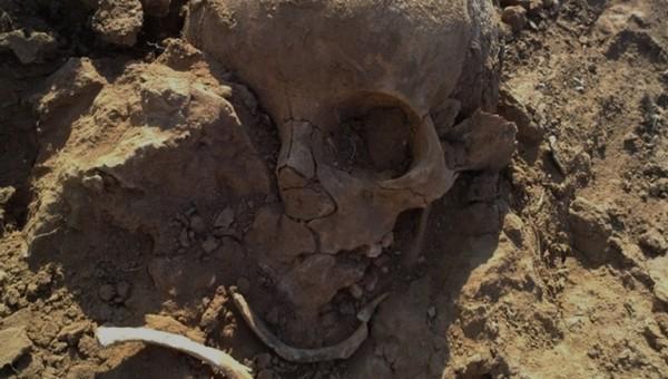 Останки человека обнаружили при работах в коллекторе в Подмосковье