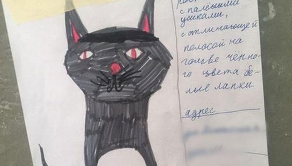 Девочка нарисовала «фоторобот» пропавшего кота. Вскоре его искала вся округа