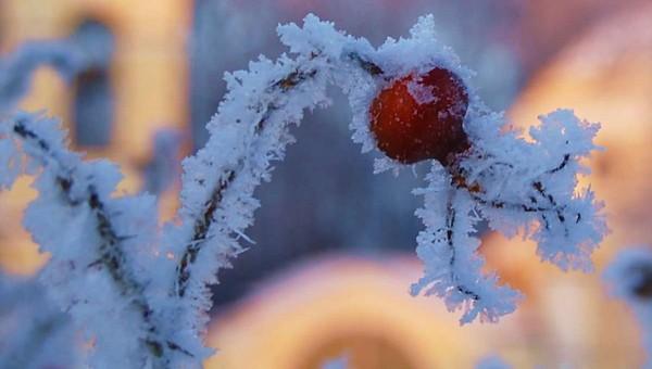 Синоптики изменили свои прогнозы на Новогоднюю ночь