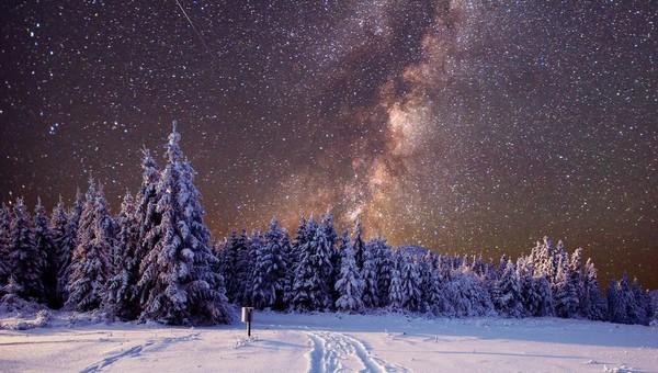 Мощный январский звездопад - шанс загадать новогоднее желание