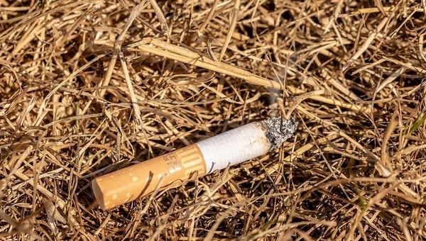 В России будут выпускать самозатухающие сигареты