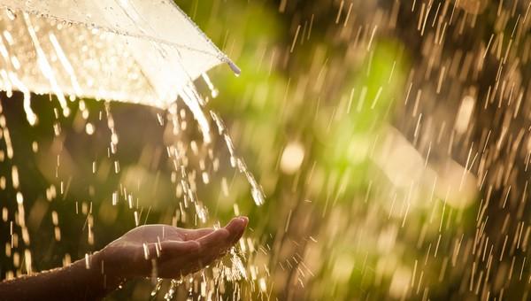 Следующая неделя начнется с дождей