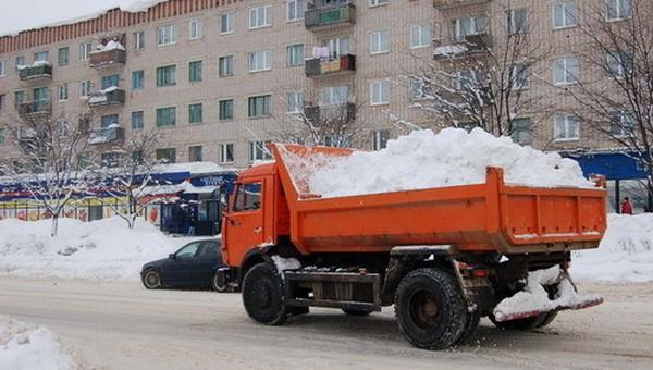 Жители Подмосковья попросили Илона Маска вывезти снег на Марс