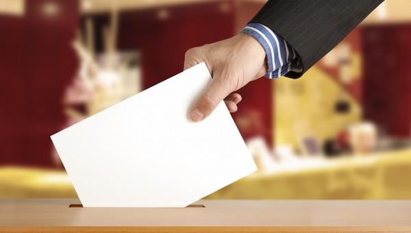 В Подмосковье объявлены результаты выборов в Общественные палаты