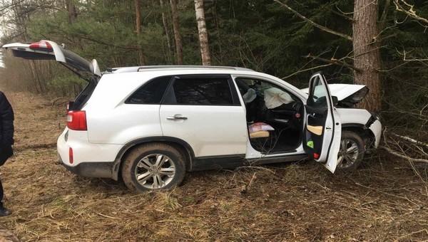 Глава Минздрава Калужской области врезался в ель