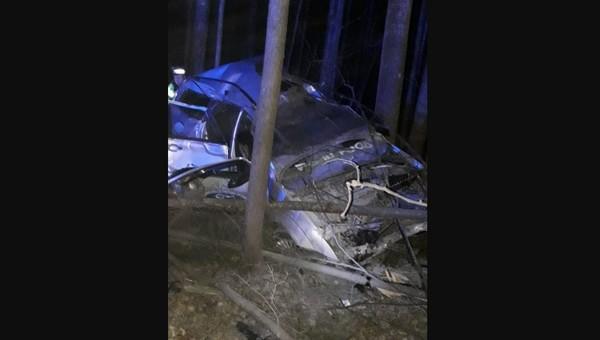 В ДТП с лосем под Серпуховом серьезно пострадал молодой водитель