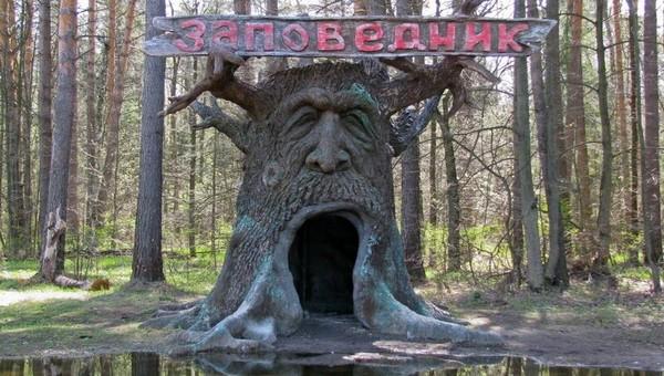 Приокско-Террасный заповедник высказался против открытия дороги