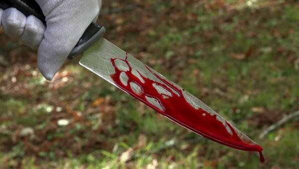 В Подмосковье мужчина зарезал соперника и выбросил тело на свалку