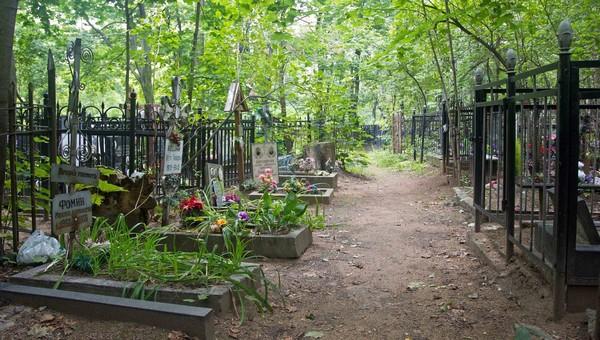 Кладбища Подмосковья открываются для посещения