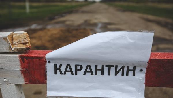 В Подмосковном населенном пункте ввели карантин