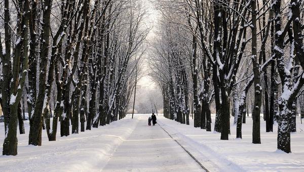 «Скандинавская зима» ожидается в столичном регионе