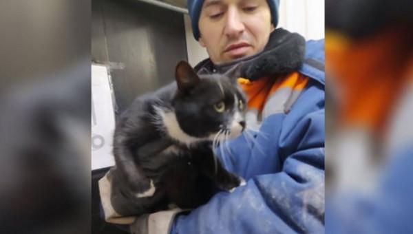 Сотрудники мусоросортировочного комплекса спасли кота