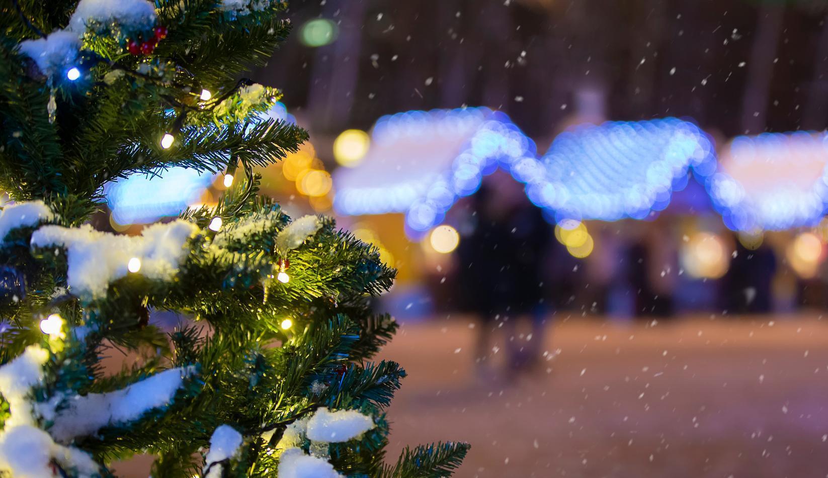 Новогодняя столица России будет в 100 км от Москвы