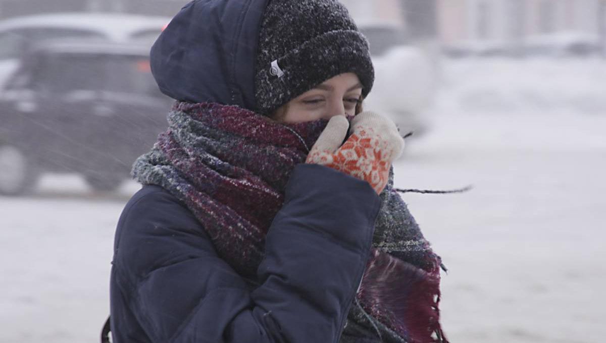 Из-за жалоб на вонь со свалки в Серпухов приезжала мобильная лаборатория