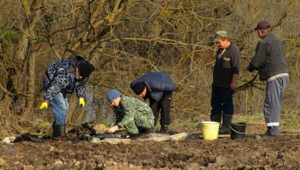 Могилу с останками десятков убитых людей нашли под Калугой