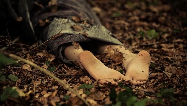 В подмосковном лесу нашли обнаженное тело женщины