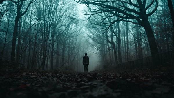Люди нашли в лесу тело женщины, убитой изощренным образом