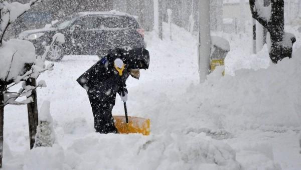 Грета придет в Подмосковье и завалит всех снегом