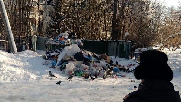 Подмосковье массово жалуется на сбои с вывозом мусора
