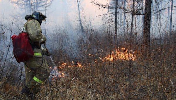 В Подмосковье на семь месяцев объявлен пожароопасный сезон
