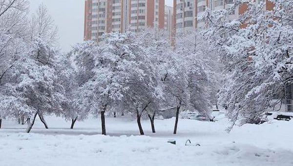 На Подмосковье и Москву вот-вот обрушится мощный снегопад