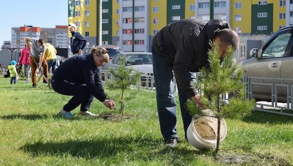 Власти Подмосковья порекомендовали зелень для высадки во дворах высоток