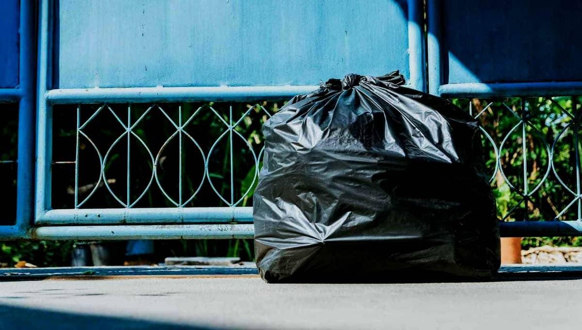 Пакет с ужасающим содержимым нашли жители подмосковного города