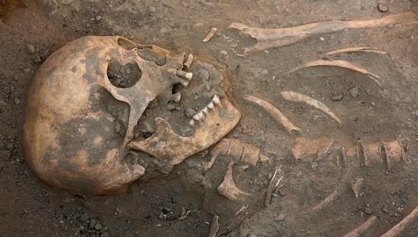 В пригороде Серпухова под домом нашли скелет человека