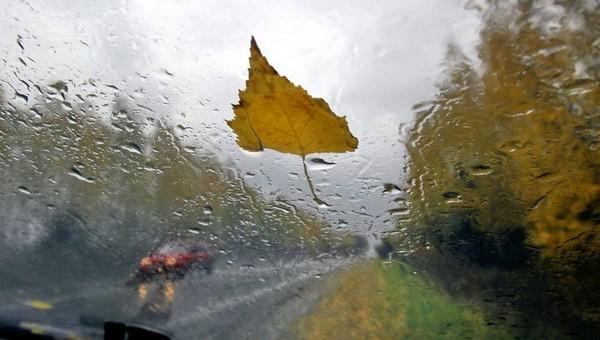 Синоптики рассказали, когда в Подмосковье придут проливные дожди
