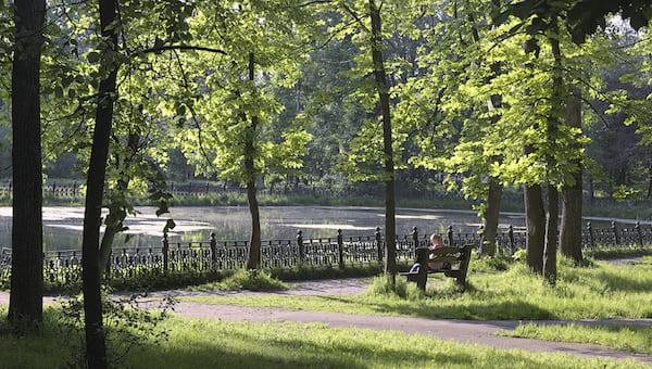 В главном парке Серпухова сегодня расскажут о его благоустройстве