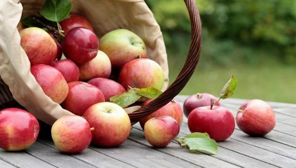 А что такое Яблочный спас?