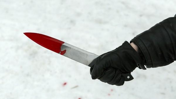 В Подмосковье задержали убийц 16-летнего подростка