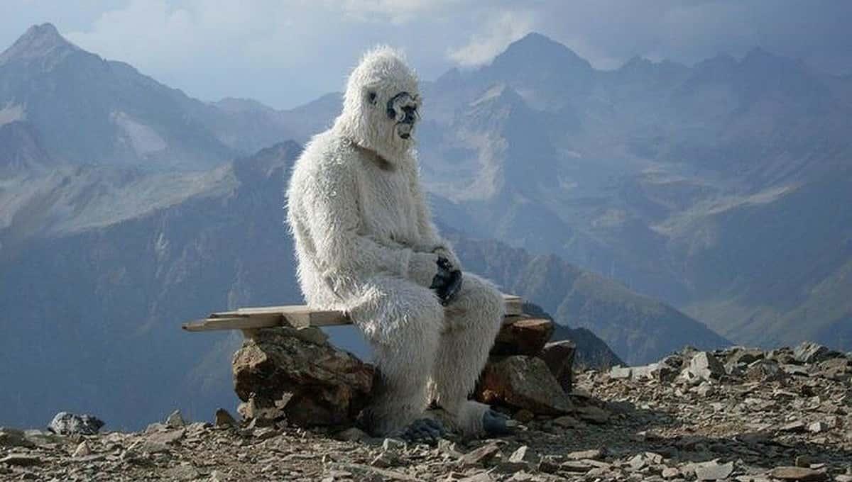 «Шубу наизнанку вывернет и побегает в людных местах, покричит, чтобы туристы заметили, но поймать не успели»
